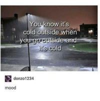 Memes, Mood, and Cold: You know it's  cold outside when  you go outside and  it's cold  donzo 1234  mood ok ok ok ok but why am i like this
