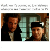 Christmas, Love, and Memes: You know it's coming up to christmas  when you see these two mofos on TV Gotta love the wet bandits 😂🙌🏼 goodgirlwithbadthoughts 💅🏼