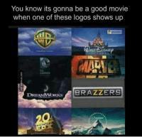 Memes, 🤖, and Alt: You know its gonna be a good movie  when one of these logos shows up  ALT DISNEP  MARINE  DREAMWORKS  BRAZZERS
