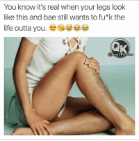 Ass, Bae, and Beyonce: You know it's real when your legs look  like this and bae still wants to fu*k the  life outta you  a Wust2Vicious Ok, maybe not THAT hairy 😩😭 If bae has a sense of humor tag her sexy stubbly ass 😍😘😂😂😂 👣🔥For Hot Memes Follow🔥👣 @just2vicious @just2vicious @just2vicious FOLLOW our Team Page 👉 @quotekillahs 👈 👣👣Follow the Squad @terryderon @ogboombostic @_prettypriceless_ @mzlightskinn_ @just2vicious just2vicious quotekillahs rns nochill instacomedy petty dead nolie wordstoliveby truestory trust respect realtalk trueshit facts kimkardashian rihanna beyonce nickiminaj truthbetold loyalty bitchesbelike niggasbelike follownow mustfollow realshit followteam follow_me followgram followtofollow
