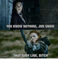you know nothing: YOU KNOW NOTHING, JON SNOW  THAT MY LINE, BITCH