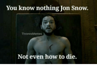 you know nothing: You know nothing Jon Snow.  Thrones Memes  Not even how to die.