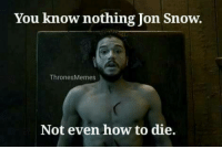 Thrones Meme: You know nothing Jon Snow  Thrones Memes  Not even how to die.