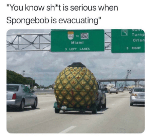"Dream house by Ghxlib MORE MEMES: ""You know sh*t is serious when  Spongebob is evacuating""  NOR  T  TINE  Turnp  TO 826  874  Orlan  Miami  RIGHT  3  3 LEFT LANES Dream house by Ghxlib MORE MEMES"