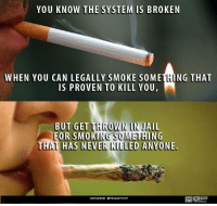 Jail, Memes, and 🤖: YOU KNOW THE SYSTEM IS BROKEN  WHEN YOU CAN LEGALLY SMOKE SOME  NG THAT  IS PROVEN TO KILL YOU,  BUT GET OWN IN JAIL  FOR SMO  ING  TH  HAS NEVER  LED ANYONE  NSTAGRAM OTRUEACTIVIST