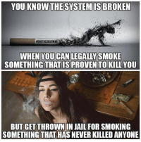 "Memes, 🤖, and Proof: YOU KNOW THESYSTEMISBROKEN  EENDTHEORUGWAR  WHEN YOU CAN LEGAL YSMOKE  SOMETHING THAT IS PROVENTO KILLYOU  BUT GET THROWN IN JAIL FOR SMOKING  SOMETHING THAT HASNEVERKILLED ANYONE 💭 After Years of Research, Big Pharma Finally Shows Evidence Cannabis Kills Cancer... 🙌 REPORT: (link to article in our bio) In April 2015 the National Institute of Drug Abuse acknowledged that cannabis kills cancer cells and dramatically reduces the growth of new brain cancer cells. . This was a startling admission, considering that federal government's position on cannabis retains it as a Schedule 1 drug with ""no medical benefit."" . Research has continued despite this roadblock, and now the pharmaceutical industry might actually help overcome government's stubbornness about cannabis as medicine. . British company GW Pharmaceuticals has been testing cannabis extracts for the past few years, and now has clinical evidence that certain formulations reduce the mortality rate of people with glioblastoma multiforme (GBM), a form of brain cancer that typically kills patients within two years. Results of the 'phase 2 proof of concept study' were announced Feb. 7.... . - Continued - . 💭 Read the FULL Report: (link in bio) http:-thefreethoughtproject.com-after-years-of-research-big-pharma-finally-shows-evidence-cannabis-kills-cancer-cells- 💭 Join Us: @TheFreeThoughtProject 💭 TheFreeThoughtProject EndTheDrugWar 💭 LIKE our Facebook page & Visit our website for more News and Information. Link in Bio.... 💭 www.TheFreeThoughtProject.com"
