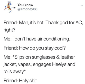 random memes starting from July 2018 that are taking up 12 gigs on my computer #9: You know  @Tmoney68  Friend: Man, it's hot. Thank god for AC,  right?  Me: I don't have air conditioning  Friend: How do you stay cool?  Me: *Slips on sunglasses & leather  jacket; vapes; engages Heelys and  rolls away*  Friend: Holy shit random memes starting from July 2018 that are taking up 12 gigs on my computer #9