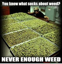 Marijuana: You know what sucks aboutweed?  NEVER ENOUGH WEED  Marijuana Memes  COm
