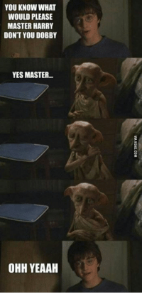 Dobby!! 😇😂 ~ Peeves: YOU KNOW WHAT  WOULD PLEASE  MASTER HARRY  DONT YOU DOBBY  YES MASTER  OHH YEAAH Dobby!! 😇😂 ~ Peeves