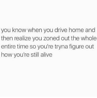 I do this too much 😳 Follow @thespeckyblonde @thespeckyblonde @thespeckyblonde @thespeckyblonde: you know when you drive home and  then realize you zoned out the whole  entire time so you're tryna figure out  how you're still alive I do this too much 😳 Follow @thespeckyblonde @thespeckyblonde @thespeckyblonde @thespeckyblonde