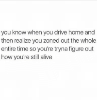 Alive, Funny, and Memes: you know when you drive home and  then realize you zoned out the whole  entire time so you're tryna figure out  how you're still alive Funny Memes. Updated Daily! ⇢ FunnyJoke.tumblr.com 😀