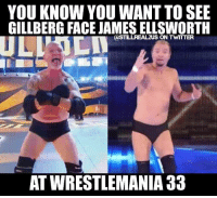Memes, Wcw, and Wrestlemania: YOU KNOW YOU WANT TO SEE  GILLBERG FACE JAMES ELLSWORTH  ASTILLREALZUS ON TWTTTER  AT WRESTLEMANIA 33 Take my money! @jamesellsworthwrestling jamesellsworth gillberg wrestlemania wwe wwememes raw share love prowrestling wrestling follow memes lol haha share like stillrealradio stillrealtous burn smackdownlive nxt faf wwf njpw luchaunderground tna roh wcw dankmemes