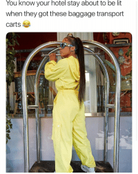 Is it just me only cuz i be getting on it too? @FashionNova 🔥👀: You know your hotel stay about to be lit  when they got these baggage transport  carts Is it just me only cuz i be getting on it too? @FashionNova 🔥👀