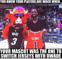 Memes, Bulls, and Sad: YOU KNOW YOUR PLAYERS ARE WACK WHEN  FO  @NBAMEMES  WADE  YOUR MASCOT WAS THE ONE TO  SWITCH JERSEYS WITH DWADE The sad reality for the Bulls  #Bulls https://t.co/qZo1OFFAaj
