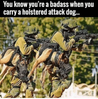 """Nice doggy nice doggy"" lovedogs badass 🐶🐕: You know you're a badass when you  carry a holstered attack dog... ""Nice doggy nice doggy"" lovedogs badass 🐶🐕"