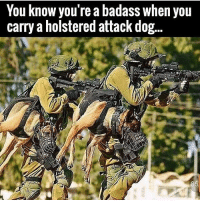 . ✅ Double tap the pic ✅ Tag your friends ✅ Check link in my bio for badass stuff - usarmy 2ndamendment soldier navyseals gun flag army operator troops tactical sniper armedforces k9 weapon patriot marine usmc veteran veterans usa america merica american coastguard airman usnavy militarylife military airforce libertyalliance: You know you're a badass when you  carry a holstered attack dog... . ✅ Double tap the pic ✅ Tag your friends ✅ Check link in my bio for badass stuff - usarmy 2ndamendment soldier navyseals gun flag army operator troops tactical sniper armedforces k9 weapon patriot marine usmc veteran veterans usa america merica american coastguard airman usnavy militarylife military airforce libertyalliance