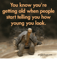 Getting Old: You know you're  getting old when people  start telling you how  young you look  purpleclover.com