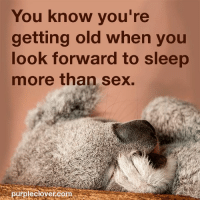 Memes, 🤖, and Sexs: You know you're  getting old when you  look forward to sleep  more than sex.  purplechovercom