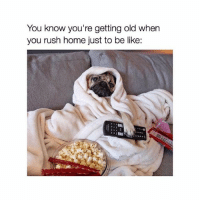 Be Like, Girl, and Home: You know you're getting old when  you rush home just to be like: Tag someone who relates 📺🍿 @teengirlclub @teengirlclub @teengirlclub