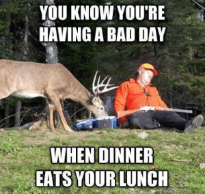 Bad, Bad Day, and Deer: YOU KNOW YOU'RE  HAVING A BAD DAY  WHEN DINNER  EATS YOUR LUNCH Oh deer