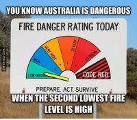 Fire, Memes, and Australia: YOU KNOWAUSTRALIAISDANGEROUS  FIRE DANGER RATING TODAY  CODE RED  LOW-MOD  PREPARE. ACT SURVIVE  WHEN THE SECOND LOWEST FIRE  LEVEL IS HIGH Everything In Australia Wants To Kill You