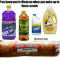 Beef, Memes, and Mexican: You knowyou're Mexican when you wake up to  these scents  30  Pine  SolF  Suavitel  iloso  @memes4_daze  BEEF CHORIZO  - Chorizo de Res  KEEPREFRIGERATFO Yessss 😂😂😂 MexicansProblemas Via @memes4_daze