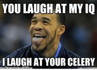 Fac, Meme, and Nba: YOU LAUGH AT MYIQ  I LAUGH AT YOUR CELERY  Brought By Fac  ebook com/NBAHunor Don't laugh at Javale McGee's IQ!