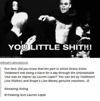 Love, Memes, and Shit: YOU LITTLE SHIT!!  AITUM  etheatricalmudblood  Fun fact: Did you know that the part in which Draco tricks  Voldemort into being a slave for a day through the Unbreakable  Vow was an improv by Lauren Lopez? You can tell by Voldemort  (Joe Walker) and Snape's (Joe Moses) genuine reactions. D  #Amazing Acting  #1 freaking love Lauren Lopez I need to marathon AVPM again this summer - Sierra