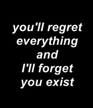 Regret, You, and Everything: you ll regret  everything  and  I'lI forget  you exist