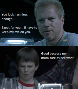 Meme, The Walking Dead, and Tumblr: You look harmless  enough...  Exept for you... II have to  keep my eye on you.  амс  Good because my  mom sure as hell wont the walking dead meme | Tumblr on We Heart It