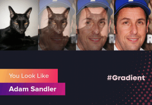 So this is my cat and apparently he looks JUST like Adam Sandler: You Look Like  #Gradient  Adam Sandler So this is my cat and apparently he looks JUST like Adam Sandler