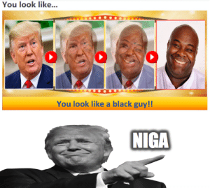 Black, Black Guy, and You: You look like...  You look like a black guy!!  NIGA soooooo.... is donal trum reelated to obamaa??????