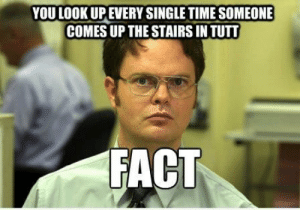 Funny Colorado College memes are funny   IndyBlog: YOU LOOK UPEVERY SINGLE TIME SOMEONE  COMES UP THE STAIRS IN TUTT  FACT Funny Colorado College memes are funny   IndyBlog
