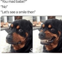 """Memes, Smile, and Mad: """"You mad babe?  """"No""""  """"Let's see a smile then""""  MORI Me! 😂"""