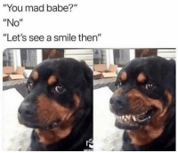 """Bae, Funny, and Smile: """"You mad babe?""""  """"No""""  """"Let's see a smile then""""  MORt Tag bae 😂"""