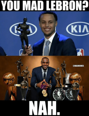 Finals, Memes, and Nba: YOU MAD LEBRON?  KIA  @NBAMEMES  KBA  NAH Top 10 memes NBA Finals – DUSE
