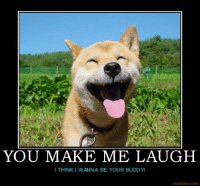 You make me laugh, I think I wanna be your buddy   #dog: YOU MAKE ME LAUGH  I THINK I WANNA BE YOUR BUDDY!  motifake.com You make me laugh, I think I wanna be your buddy   #dog