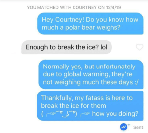 Is this the way?: YOU MATCHED WITH COURTNEY ON 12/4/19  Hey Courtney! Do you know how  much a polar bear weighs?  Enough to break the ice? lol  Normally yes, but unfortunately  due to global warming, they're  not weighing much these days :/  Thankfully, my fatass is here to  break the ice for them  e how you doing?  +.  Sent Is this the way?