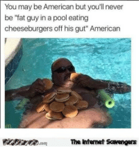 """<p>Funny Wednesday balderdash  A midweek collection of smiles  PMSLweb </p>: You may be American but you'll never  be """"fat guy in a pool eating  cheeseburgers off his gut"""" American  Finsire.comThe ntemet Savengers <p>Funny Wednesday balderdash  A midweek collection of smiles  PMSLweb </p>"""