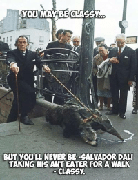 Have you ever been so classy..: YOU MAY BE CLASSY  BUT YOULL NEVER BE -SALVADOR DALI  TAKING HIS ANT EATER FOR A WALK  CLASSy. Have you ever been so classy..
