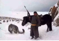 Cool, Snow, and Ak-47: You may be cool, but you will never be as cool as this Mongolian Shepherd with his AK-47 and pet snow leopard.