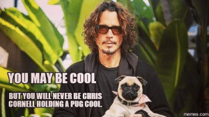 chris cornell: YOU MAY BE COOL  BUTYOU WILLNEVER BE CHRIS  CORNELL HOLDING A PUG COOL  memes.com