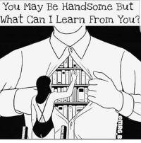 🤔📚: You May Be HandSome But  What Can I Learn From You? 🤔📚
