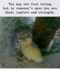 Strong, May, and You: You may not feel strong  but in someone's eyes you are  their comfort and strength. BFF