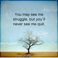 You nay see me struggle, but you'll never see me quit. powerofpositivity: You may see me  struggle, but you ll  never see me quit You nay see me struggle, but you'll never see me quit. powerofpositivity