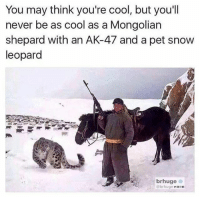 Funny, Meme, and Memes: You may think you're cool, but you'll  never be as cool as a Mongolian  shepard with an AK-47 and a pet snow  leopard  brhuge  br huge woon I will be this cool one day... . . . military militaryhumor militarymemes army navy airforce coastguard usa patriot veteran marines usmc airborne meme funny followme troops ArmedForces militarylife popsmoke