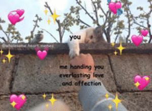 wholesome heart memes @wholesome.heart.memes Best Online Instagram ...: you  me handing you  and affection wholesome heart memes @wholesome.heart.memes Best Online Instagram ...