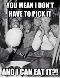 """<p>Civil rights movement via /r/dank_meme <a href=""""http://ift.tt/2BViCwM"""">http://ift.tt/2BViCwM</a></p>: YOU MEANIDONT  HAVE TO PICKIT  ANDUCAN EAT ITA  quickmeme.com <p>Civil rights movement via /r/dank_meme <a href=""""http://ift.tt/2BViCwM"""">http://ift.tt/2BViCwM</a></p>"""