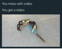 """Memes, 🤖, and Pls: You mess with crabo  You get a stabo You are doomed to this fate unless you comment """"pls no stabo crabo."""""""
