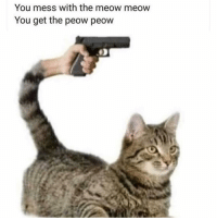 Gym, You, and Mess: You mess with the meow meow  You get the peow peow Offtopic, but this killed us 😂